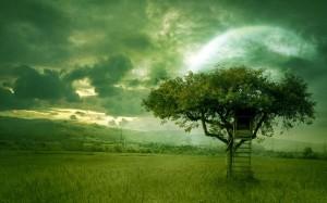 Arbol respuestas al corazón en verde