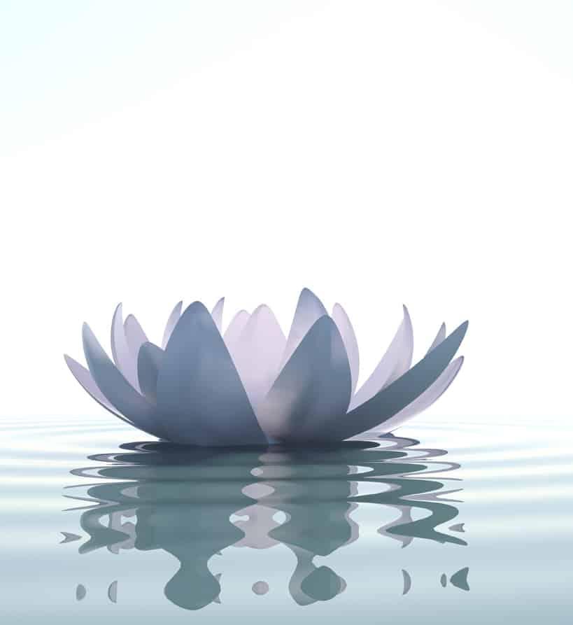 Curso de iniciación a la meditación y mindfulness