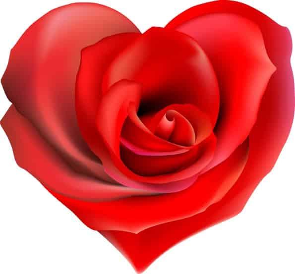 21 de Noviembre – El corazón del ser humano – Respuestas al corazón