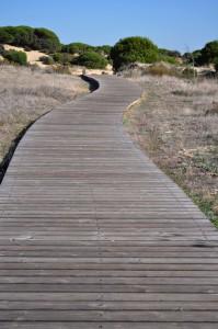 Retiro Meditación Mayo 2014 - Psarela al Coto de Doñana