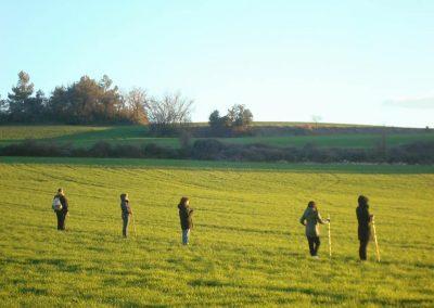 el arte de caminar, paseos contemplativos